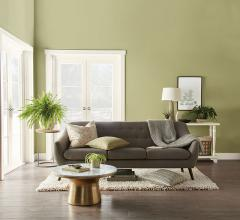 Behr Paint's 2020 Color of the Year Back to Nature