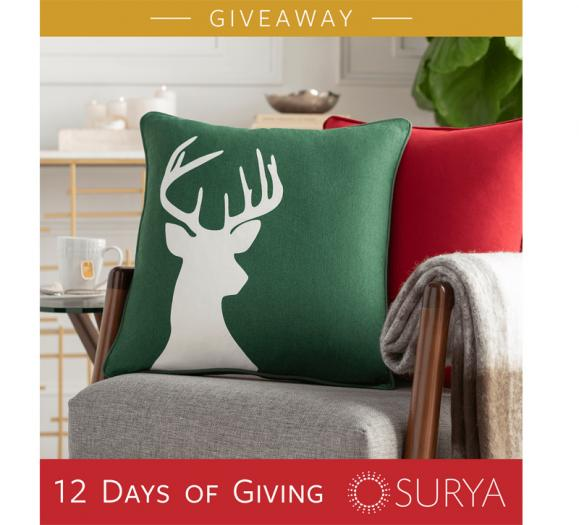 Surya 12 days of giving
