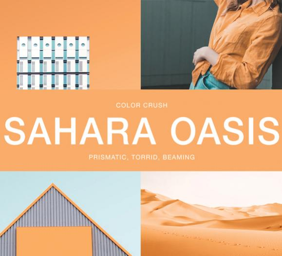 Sahara Oasis Stacy Garcia