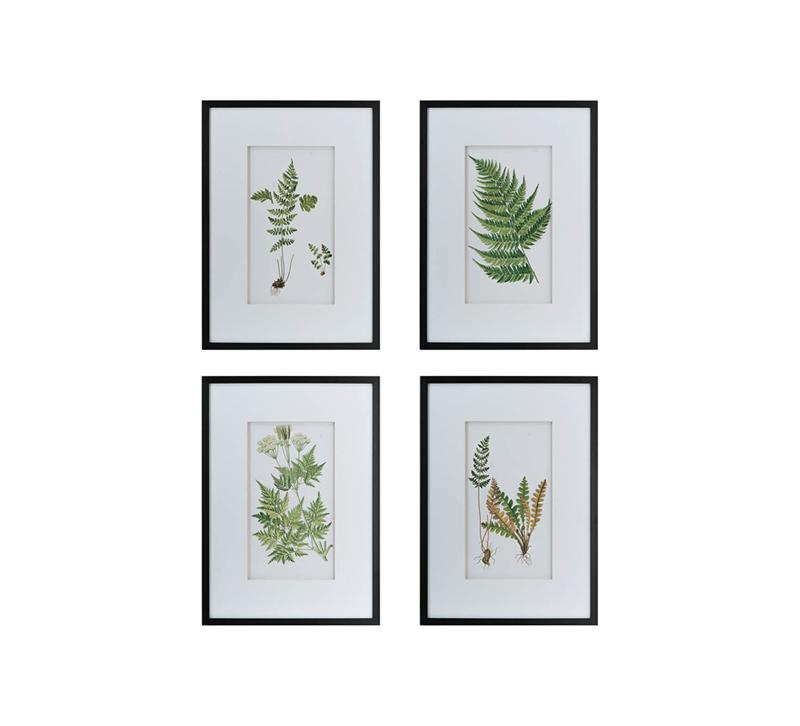 A&B Home Botanical Fern Wall Art